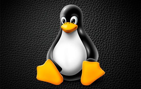 Qué es Linux?