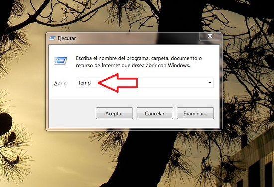 Elimina archivos temporales