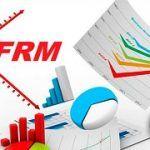 ¿Qué es FRM?