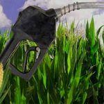¿Que son los biocombustibles?