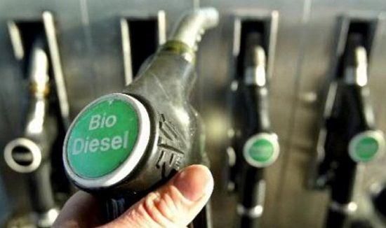 Qué son los biocombustibles