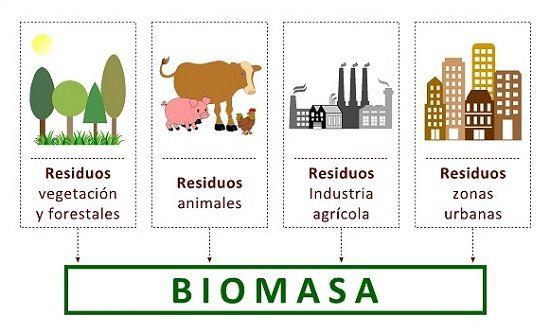 Que es biomasa